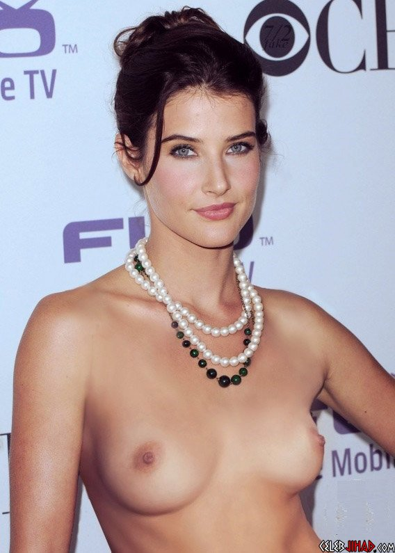 """Cobie Smulders Nipple Slip And Camel Toe In """"Alright Now"""""""