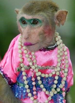 Nicki Minaj monkey