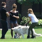 Miley Cyrus Ashley Greene Caught In Dog Fighting Ring