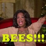 Oprah Unleashes Swarm Of Bees On Audience