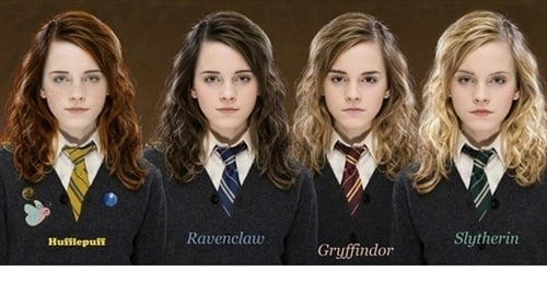 Hermiones Harry Potter Spin-Off Movie Announced-9914