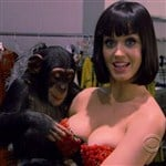 Katy Perry Lets Monkey Play With Her Tits