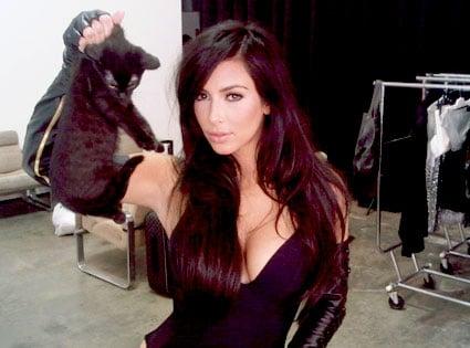 Kim Kardashian's Latest Animal Torture Alligations