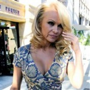 Pamela Anderson Is Looking Really Old