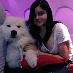 Ariel Winter Caught Sexually Abusing A Dog